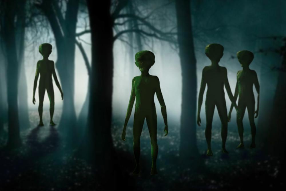 McMenamins UFO Festival